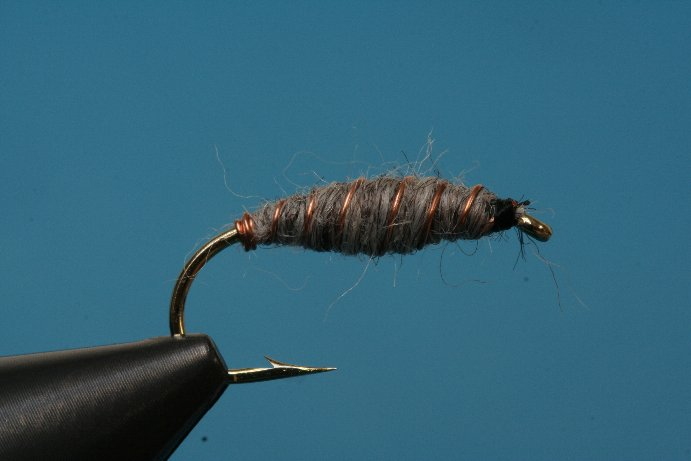 Sayers Grayling Killer Bug